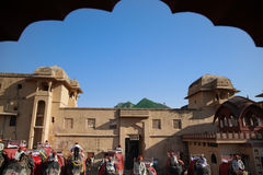 Elephant queue at Amber Palace, Rajasthan, India Stock Images