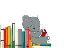 Elephant reading Royalty Free Stock Image
