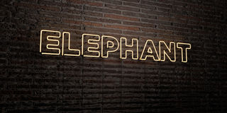 ELEPHANT -Realistic Neon Sign on Brick Wall background - 3D rendered royalty free stock image Stock Image