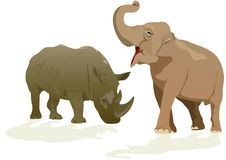 Elephant and rhino Royalty Free Stock Photography