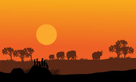 Elephant and rhino silhouette Royalty Free Stock Photography