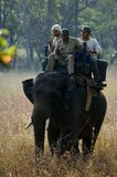 Elephant Ride. Royalty Free Stock Images