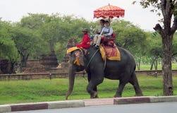 Elephant ride Stock Images