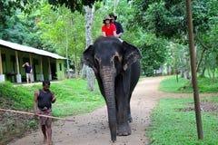 Free Elephant Ride Royalty Free Stock Images - 57985939