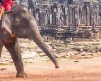 Elephant ride on angkor, bayon temple view Stock Photo