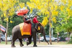 Elephant ride in Ayudhaya, Thailand Stock Photo