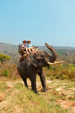 Elephant Ride in Chiang Mai, Thailand Royalty Free Stock Images