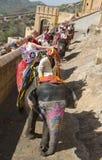 Elephant Ride, Inda Travel, Tourists Stock Photography