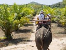 Elephant ride Royalty Free Stock Images