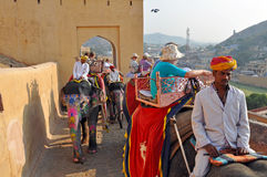 Elephant Riders in the Amber Fort , India Royalty Free Stock Image