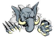 Elephant ripping through background Royalty Free Stock Photo