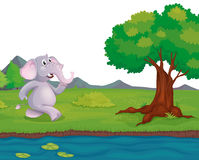 An elephant at the riverbank Royalty Free Stock Photos