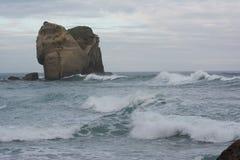 Elephant rock beach. Crashing waves off the coast of Dunedin, New Zealand Royalty Free Stock Image