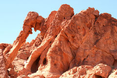 Elephant Rock in Valley of Fire Royalty Free Stock Image