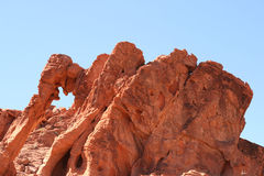 Elephant Rock in Valley of Fire, Nevada Royalty Free Stock Image