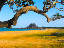 Elephant rock in Yala national park Sri Lanka. On the Indian Ocean Royalty Free Stock Photo