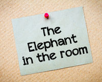 The Elephant in the room Stock Images