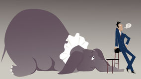 Elephant in the room Royalty Free Stock Photos