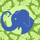 Elephant in a round frame decorated with a pattern of leaves. For labels, packaging, decor, stickers. vector illustration