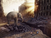 An elephant and the ruins of a city. With a crack in the street. (photo combination concept Royalty Free Stock Photo