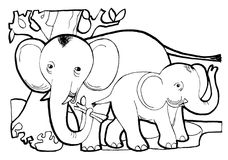 Elephant`s familyColoring book page, black and white version illustration. stock illustration