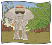 Elephant Safari. An elephant is ready for his safari through the bush, just in case he has a compass strapped to his trunk Royalty Free Stock Photo