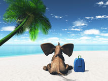 Elephant sat on the beach. 3D render of an elephant sat on a beach with suitcase Royalty Free Stock Images