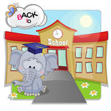 Elephant and school Stock Image