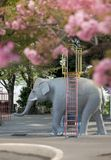 Elephant sculpture under the cherry blossoms of Asukayama Park i. N the Kita district, north of Tokyo royalty free stock image