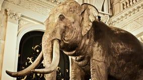 Elephant Sculptures at The Chakri Maha Prasat Thro Royalty Free Stock Photo