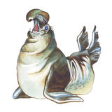 Elephant seal. Hand drawing watercolor Stock Images