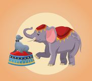Elephant and seal cartoon of circus. Elephant and seal cartoon icon. Circus carnival and festival theme. Colorful  design. Vector illustration Royalty Free Stock Photo