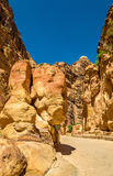 The Elephant Shaped Rock at Petra Royalty Free Stock Image