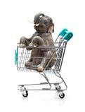 Elephant in shopping cart Stock Image