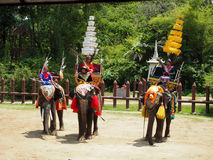 Elephant Showing at Nakom Pathom, Thailand. stock photography