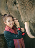 Elephant shows Royalty Free Stock Image