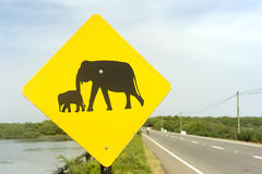 Elephant Sign. Yellow Elephant wanring sign on the road in Sri Lanka Royalty Free Stock Images