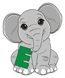Elephant with sign. Funny elephant sit and hold letter e Royalty Free Stock Images