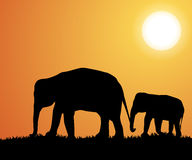 Elephant silhouettes in Africa. Vector Stock Images
