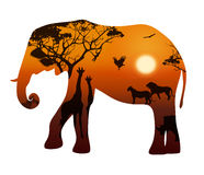 Elephant with silhouettes of animals savanna. Elephant silhouette on a white background. Landscape with sunset and savannah animals, illustration royalty free illustration