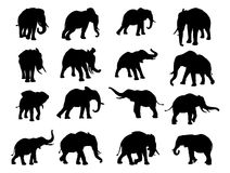 Elephant Silhouettes Royalty Free Stock Photos
