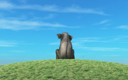 Elephant sits atop a hill Royalty Free Stock Photo