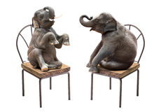Elephant Sitting On Chair Stock Photos