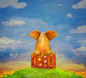 Elephant sitting on the suitcase on the glade royalty free illustration