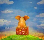 Elephant sitting on the suitcase on the glade royalty free illustration