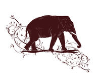 Elephant sketch decorated floral design Stock Photos