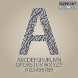 Elephant Skin Alphabet and Numbers Vector Royalty Free Stock Photo