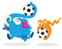 Elephant and Snake play with Soccer Ball Stock Photos