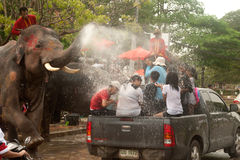 Elephant splashing water in Songkran day in Thailand. AYUTTAYA, THAILAND - APRIL 15: Songkran Festival is celebrated in a traditional New Year s Day from April Royalty Free Stock Images