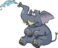 Elephant squirting water Royalty Free Stock Photos